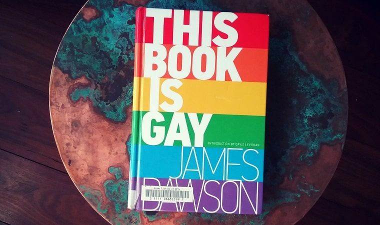 cover of This Book is Gay by James Dawson