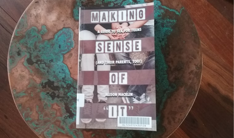 cover of Making Sense of It