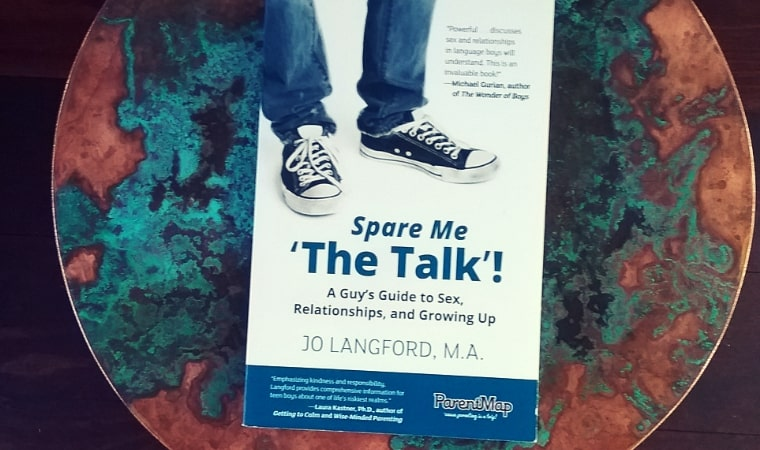 cover of Spare Me 'The Talk'! A Guy's Guide to Sex, Relationships, and Growing Up by Jo Langford