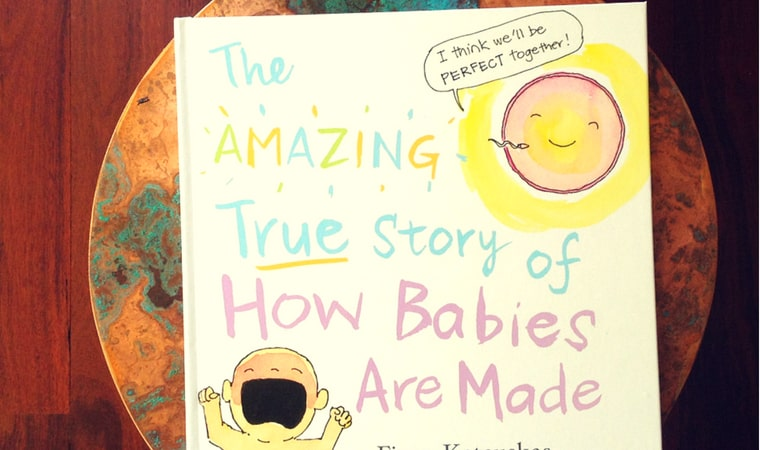 cover of The Amazing True Story of How Babies Are Made by Fiona Katauskas